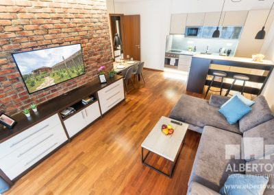 F3-314_2020_pronajem_apartmany_Praha_Albertov_Rental_Apartments-04