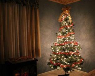 Warum Schmückt Man Den Weihnachtsbaum.Idealer Weihnachtsbaum Tipps Wie Man Ihn Bekommt Schmückt Und