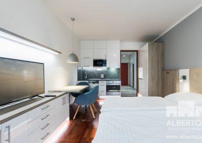e-211_pronajem_apartmany_praha_albertov_rental_apartments-05-1
